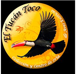 El Tucán Toco